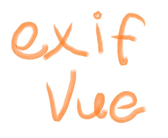 Get image's EXIF data on Vue js - Never test